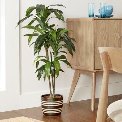 Silk Floor Plant in Pot