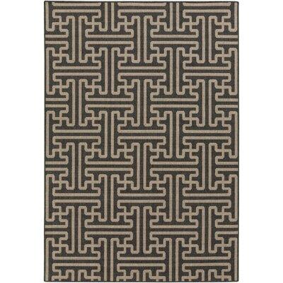 Delaney Black Indoor/Outdoor Area Rug Rug Size: Runner 23 x 119