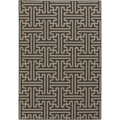 Delaney Black Indoor/Outdoor Area Rug Rug Size: 53 x 76