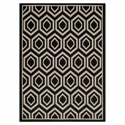 Catharine Black/Beige Outdoor Rug Rug Size: Rectangle 67 x 96