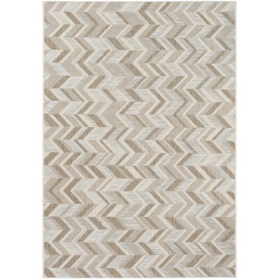 Farlough Brown/Neutral Indoor/Outdoor Area Rug Rug Size: 2 x 37