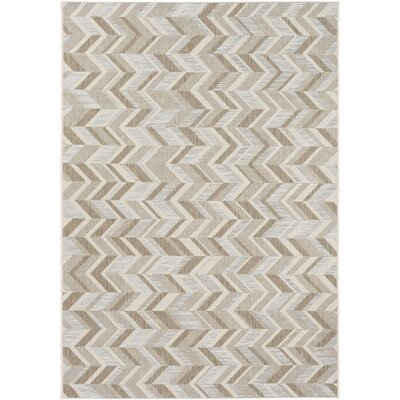 Farlough Brown/Neutral Indoor/Outdoor Area Rug Rug Size: 53 x 77
