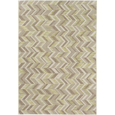 Farlough Brown/Neutral Indoor/Outdoor Area Rug Rug Size: 311 x 57