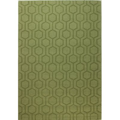Ogden Hand-Woven Light Green Area Rug Rug Size: 76 x 96