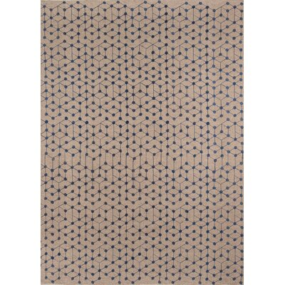 Oasis Hand-Woven Brown/Blue Area Rug Rug Size: Rectangle 8 x 10