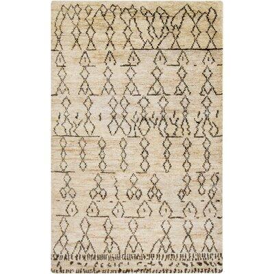 Sophia Hand-Woven Area Rug Rug Size: Rectangle 2 x 3