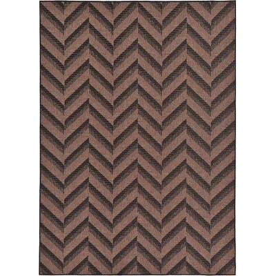 Jordan Brown Outdoor Area Rug Rug Size: 7 x 10
