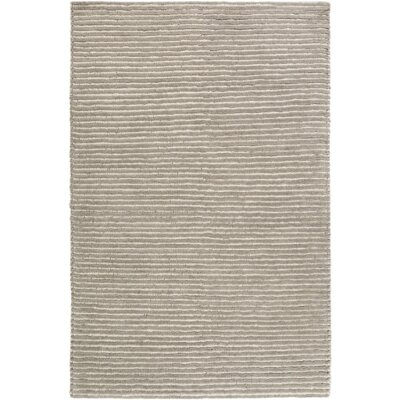 Greenhouse Hand-Woven Gray Area Rug Rug Size: 5 x 76