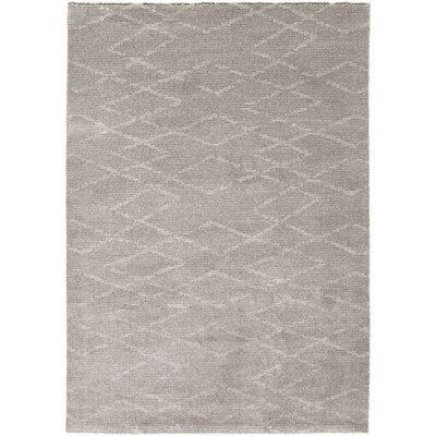 Aylin Light Gray Area Rug Rug Size: Rectangle 8 x 10