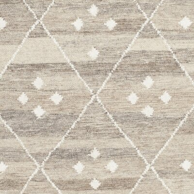 Aldergrove Hand-Woven Beige Area Rug Rug Size: Rectangle 26 x 4