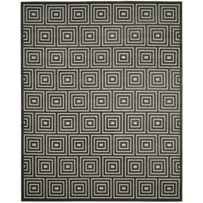 Candor Black Indoor/Outdoor Area Rug Rug Size: Rectangle 53 x 77