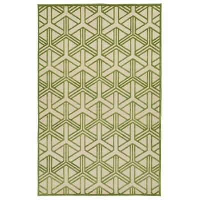 Alterson Green & Cream Indoor/Outdoor Area Rug Rug Size: Rectangle 5 x 76
