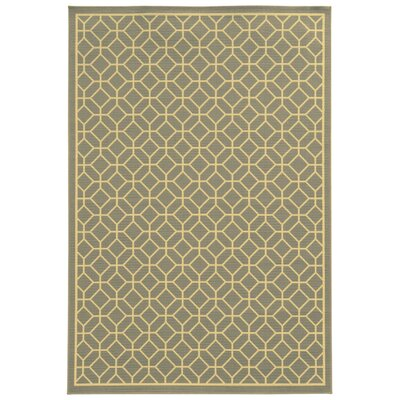Liza Grey/Ivory Indoor/Outdoor Area Rug Rug Size: Runner 23 x 76
