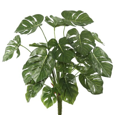 Artificial Split Philo Foliage Plant