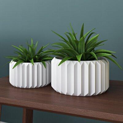 Junius Fluted 2 Piece Ceramic Pot Planter Set