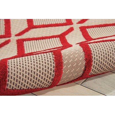 Taschen Red Indoor/Outdoor Area Rug Rug Size: 53 x 75