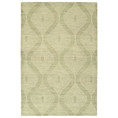 Caneadea Hand-Tufted Sage/Gray Green Area Rug Rug Size: Rectangle 36 x 56