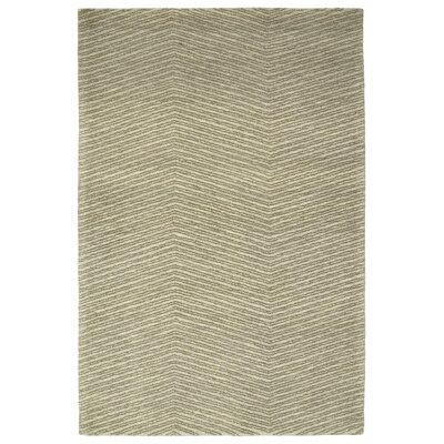 Caneadea Hand-Tufted Green Area Rug Rug Size: Rectangle 36 x 56