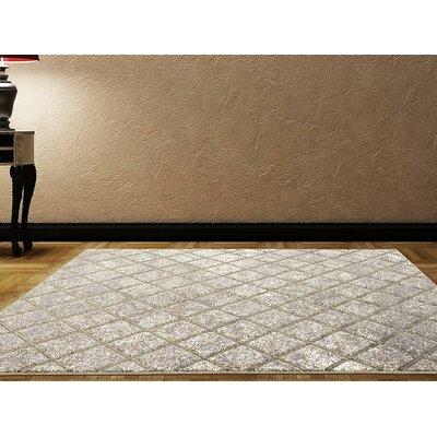 Dossantos Stain Resistant Gray Indoor/Outdoor Area Rug Rug Size: 52 x 72