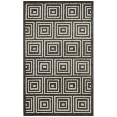 Candor Black Indoor/Outdoor Area Rug Rug Size: Rectangle 4 x 6