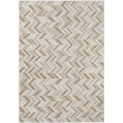 Farlough Brown/Neutral Indoor/Outdoor Area Rug Rug Size: Rectangle 53 x 77