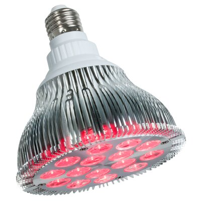 PowerPar 15W Red 120-Volt LED Light Bulb