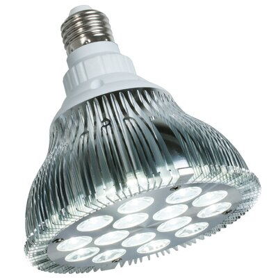 PowerPar 15W 120-Volt LED Light Bulb