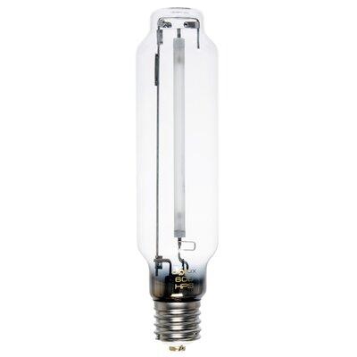 E39/Mogul Xenon Light Bulb Wattage: 600W