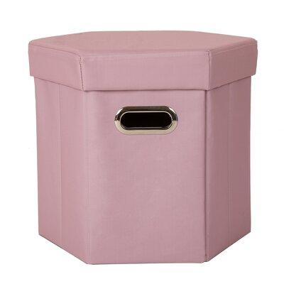 Storage Ottoman Upholstery: Pink