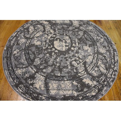 Fasano Gray Area Rug Rug Size: Round 6