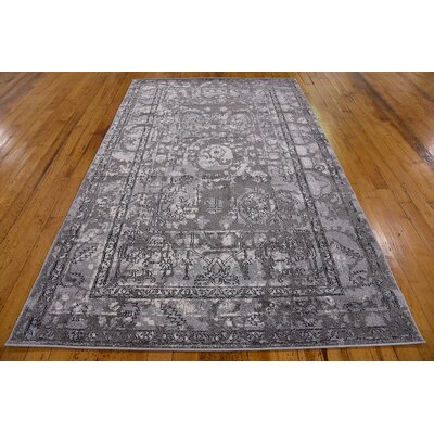 Fasano Gray Area Rug Rug Size: Rectangle 5 x 8
