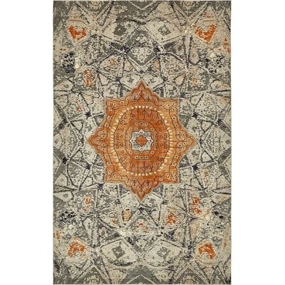 Newton Gray Area Rug Rug Size: Runner 2 x 67