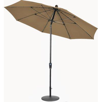 9 Market Umbrella Fabric: Macaw, Frame Finish: Black