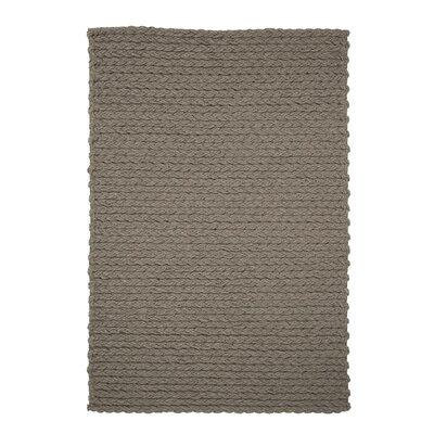 Trenzas Handmade Taupe Area Rug Rug Size: 56 x 79