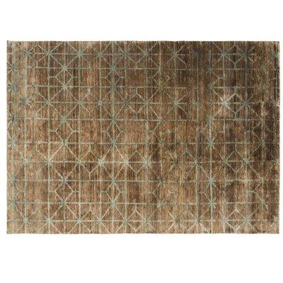 Waterkeyn Hand-Knotted Terra Area Rug Rug Size: 57 x 711