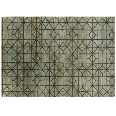 Waterkeyn Hand-Knotted Aqua Area Rug Rug Size: Rectangle 57 x 711