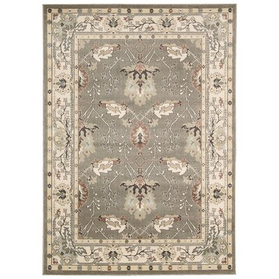 Auvergne Dove Gray Area Rug Rug Size: Rectangle 93 x 129