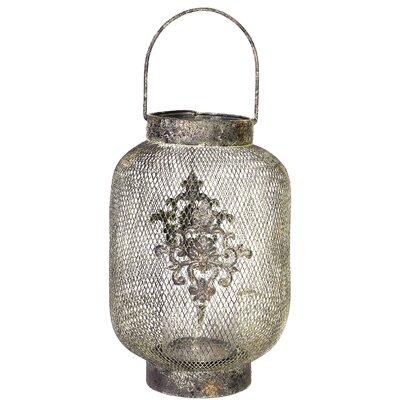 Phalangere Metal Lantern