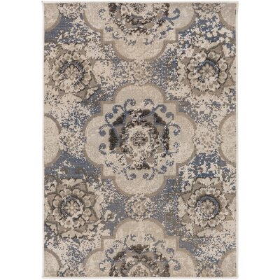 Raquel Blue/Gray Area Rug Rug Size: Rectangle 22 x 4