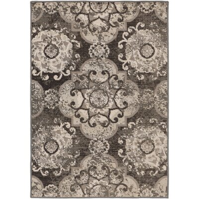 Raquel Charcoal & Black Area Rug Rug Size: Rectangle 22 x 4