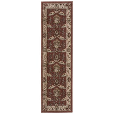 Denis Rust/Ivory Area Rug Rug Size: Runner 22 x 76