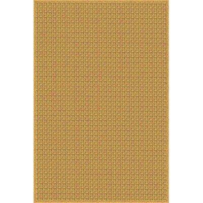 Camella Hand Woven Brown Indoor/Outdoor Area Rug Rug Size: 8 x 10
