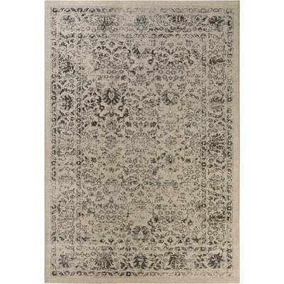 Montlucon Beige & Blue Area Rug Rug Size: Rectangle 51 x 76
