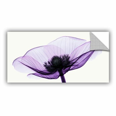 Anemone II Graphic Art on Canvas