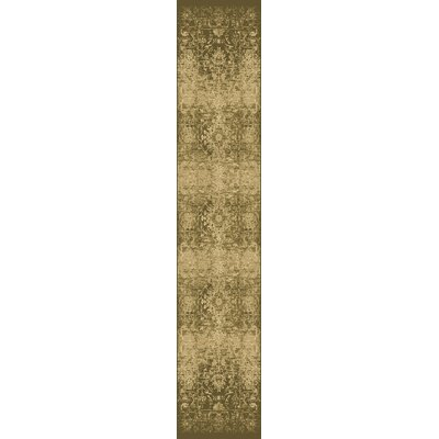 Giroflee Olive Area Rug Rug Size: Runner 22 x 711
