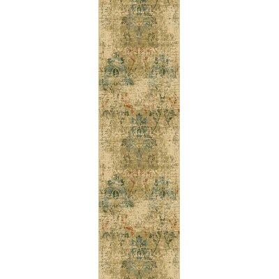 Aminata Area Rug Rug Size: Runner 22 x 711
