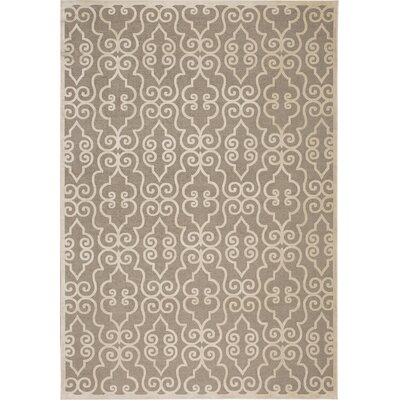Robicheaux Grey Area Rug Rug Size: Rectangle 53 x 76