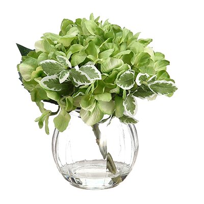 Aleyna Hydrangea in Glass Vase Color: Green
