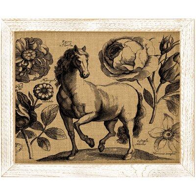 'Horse' Framed Graphic Art