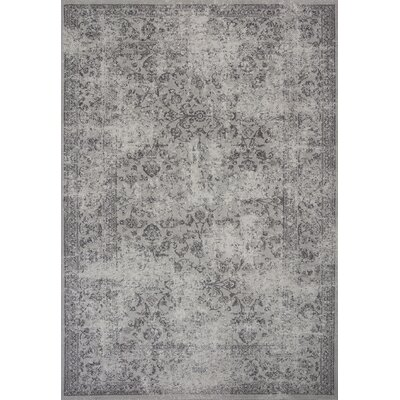 Cassandre Gray Area Rug Rug Size: 53 x 77